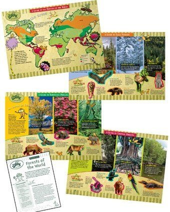 Eureka The Lorax Save the Forest  Bulletin Board Sets