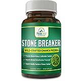 STONE BREAKER Chanca Piedra – Extra Strength – 120 Capsules - Kidney &...