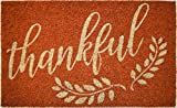 Avera Products Thankful Fall Autumn Welcome Mat, All Natural Coir Fiber with Anti-Slip PVC Backing, 17x29 ADH023
