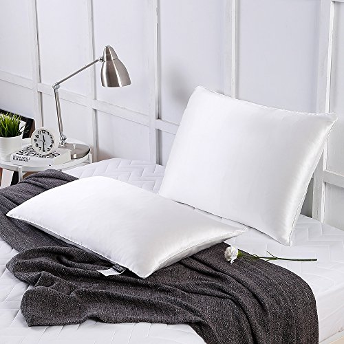 LilySilk Silk Sleep Pillow Insert Filled by 100% Silk with Pure Silk Shell Soft 1 pc Standard 20x26 Inches