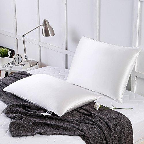 LilySilk Silk Sleep Pillow Insert Filled by 100% Silk with Pure Silk Shell Soft 1 pc Standard 20x26 -