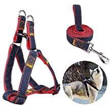 Itian No-Pull Dog Leash Harness Set, Adjustable and Heavy Duty Denim Dog Leash Collar for Training Walking Running, Rescue No-Pull Harness for Large/Medium/Small Dog