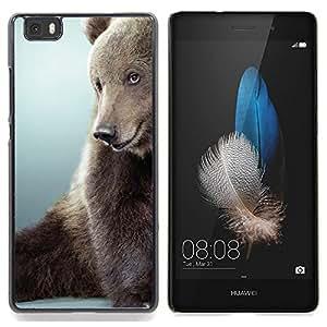Planetar ( Divertido lindo de Brown Oso peludo gris Bestia ) Huawei Ascend P8 Lite (Not for Normal P8) Fundas Cover Cubre Hard Case Cover