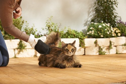 Garniture pour soin des chats 6 pièces Bontoy