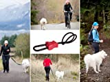 Buddy – Hands free dog leash connector – biking, jogging, hiking, walking, My Pet Supplies