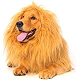 Lion Mane for Dog, Dogloveit Dog Costume with Gift [Lion Tail] Lion Wig for Dog Large Pet Festival Party Fancy Lion Hair Dog Clothes Dress