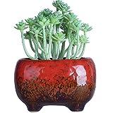 Succulent Pots | Ceramic Bonsai Pot with Drainage
