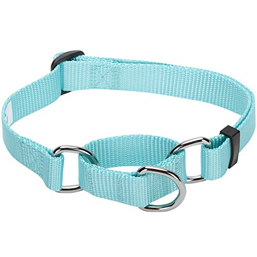 Blueberry Pet 19 Colors Safety Training Martingale Dog Collar, Mint Blue, Medium, Heavy Duty Nylon Adjustable Collars for - Dog Show Blue Collar