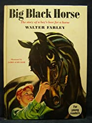 Big Black Horse: The Story of a Boy's Love for a Horse