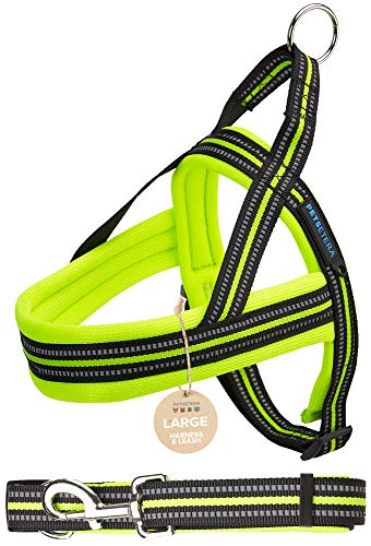 Petsetera Green Pet Leash and Harness Set – Ultra Comfortable Padded Mesh, No Pull Design – Premium Grade Adjustable Reflective Strap – Training, Walking and Jogging Collar for Dogs, Large