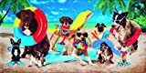 Bahia Collection by Dohler Dogs at the Beach Velour Brazilian Beach Towel 30x60 Inches