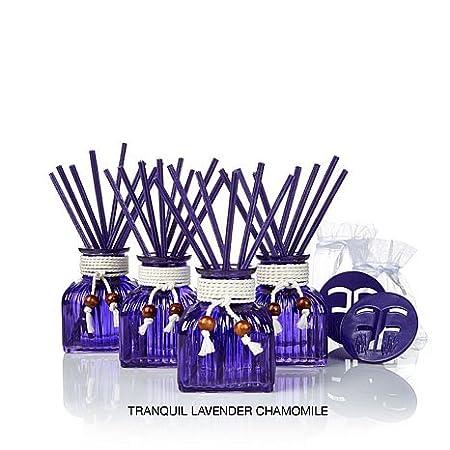 Joy Mangano Forever Fragrant Apothecary Vases Bye Bye Odors Hello