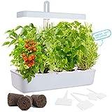GrowLED LED Height Adjustable,10-Pod Indoor Garden Germination Kit, Self Watering Herb Garden, Hydroponic Kitchen Garden…