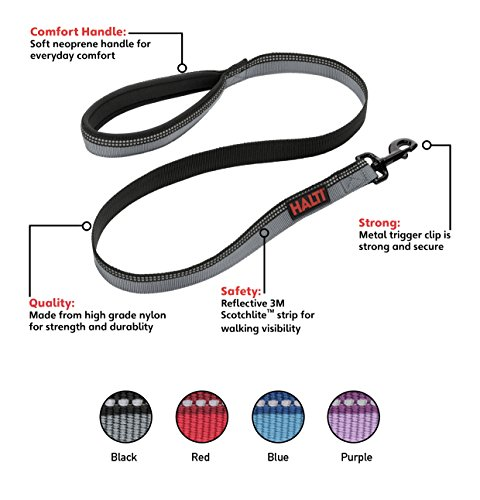The Company of Animals - HALTI Lead - Strong and Durable Nylon Dog Leash - Neoprene Lined Handle - 3M Reflective Strip - Large - Black by The Company of Animals (Image #3)