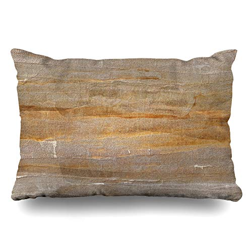 (Ahawoso Throw Pillow Cover Queen 20x30 Dry Brown Tone Light Earth Color Abstract Space Orange Sepia Dirt Dirty Earthy Design Grunge Zippered Cushion Pillow Case Home Decor Pillowcase)