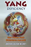 Yang Deficiency - Get Your Fire Burning Again!: Volume 3 (Chinese Medicine in English)