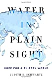 img - for Water in Plain Sight: Hope for a Thirsty World book / textbook / text book