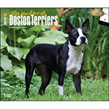 For the Love of Boston Terriers - 2014 Deluxe Calendar by Browntrout