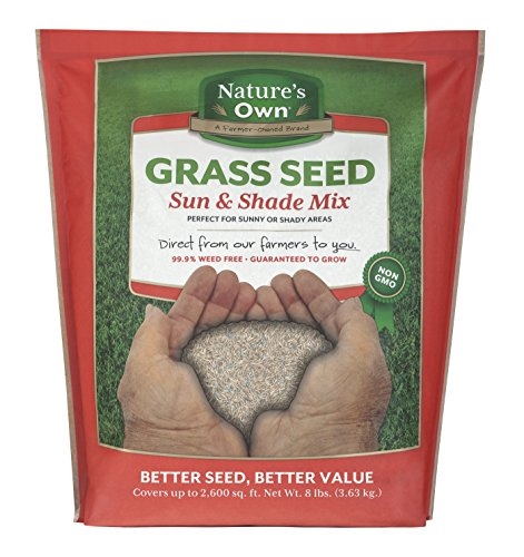 Mountain View Seeds Natures Own Sun & Shade Mix Grass Seed, 8-pounds by Mountain View Seed (Image #4)