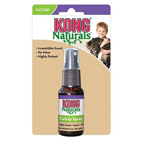 KONG-Naturals-Catnip-Spray-for-Cats-1-Fluid-Ounces