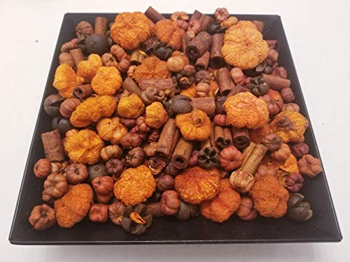 Nature's Lot (Pumpkin Patch Fall Potpourri Handmade in Lancaster County PA. Mini Pumpkins, Cinnamon Sticks and Beautiful Botanicals, 28-32 oz by Volume