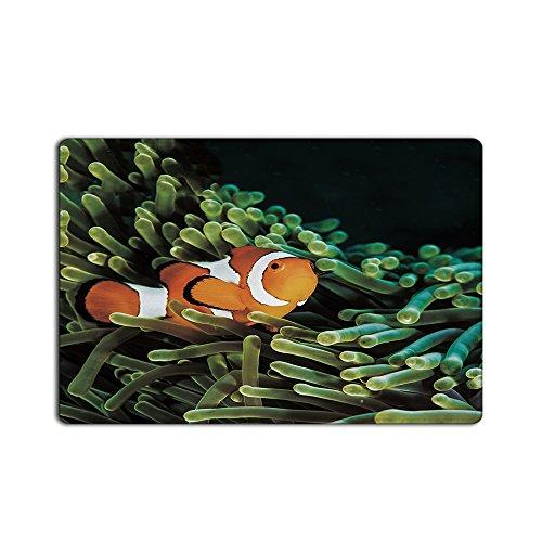 Omnipotent Youth Door Mats Anemone with clownfish Indoor Bathroom Kitchen Decor Rug Mat Welcome Doormat - 23.6