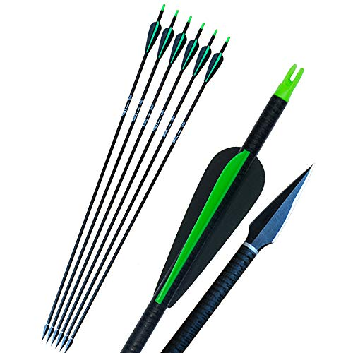 D&Q 6 pcs Fiberglass Hunting Arrows 31 Inches Shooting Target Practice Arrows with Adjustable Nocks 2 Blades Broadheads 3-Inch Feather Fletching For 30-55lbs Archery Recurve Compound Bow