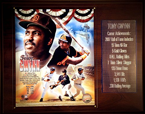 C&I Collectables MLB San Diego Padres Tony Gwynn 12 x 15-Inch Career Stat Plaque