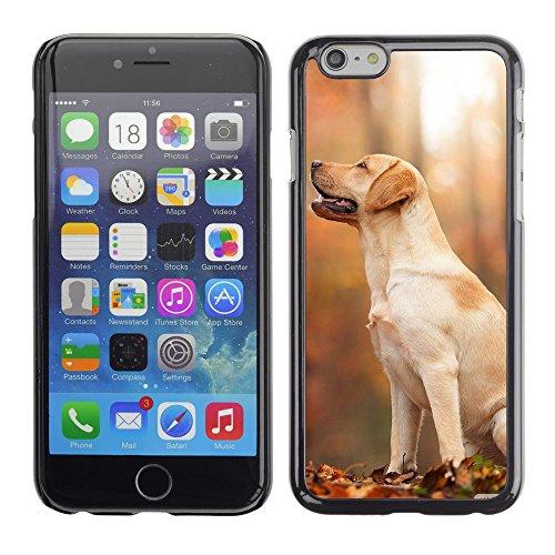 """Premio Sottile Slim Cassa Custodia Case Cover Shell // V00003242 automne chien // Apple iPhone 6 6S 6G PLUS 5.5"""""""