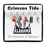 Wine Things University of Alabama Painted Glassware Charms