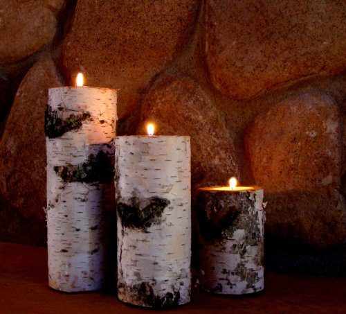 - Real Birch Log Candle Holder Set