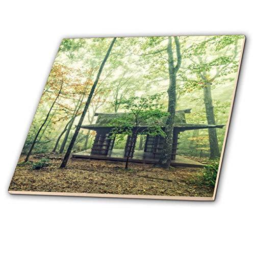 3dRose Boehm Photography Landscape - Pavilion in The Forest - 4 Inch Ceramic Tile (ct_203139_1) ()