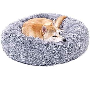 Amazon.com: Ferplast Dandy C 55 - Cama para gatos y perros ...