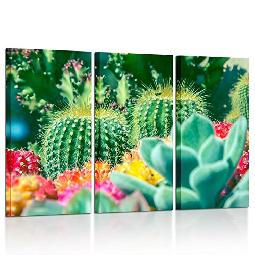 Kreative Arts Large Green Cactus Thorny Plant Modern Decoration 3 Pieces Canvas Print Wall Art for Living Room Office House Decor Ready to Hang 16x32inchx3pcs
