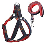 ARCE No-Pull Dog Harness Denim Thoracodorsal Traction Rope Adjustable & Durable Leash Set,Perfect Daily Training Walking Running(XL)