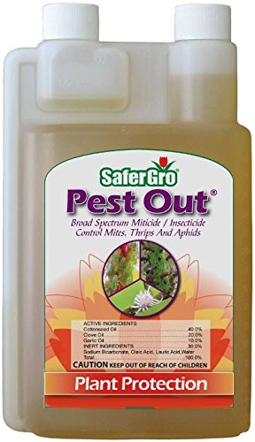 510smhUhjmL SaferGro SG0238RTU, Pest Out Broad Spectrum Miticide, Insecticide 16 Ounce