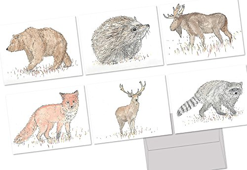 (72 Note Cards - Forest Animals - 6 Designs - Blank Cards - Gray Envelopes Included)