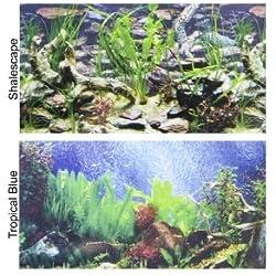 "Penn Plax Double-Back Aquarium Background - Tropical Blue / Shalescape 24"" Tall x 48"" Wide - (Fits 45-120 Gallon Tanks)"