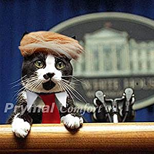 Prymal Trump Cat Costume for Halloween, Festival and Parties