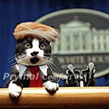 Trump Cat Costume and Tie for Halloween, Festival, Parties and activities