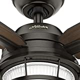 Hunter Ocala Indoor / Outdoor Ceiling Fan with LED