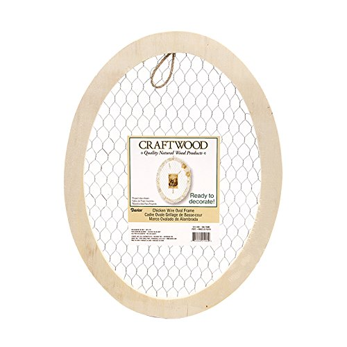 Darice 99191-0081 Craft Supplies, Multicolor (Window Wire Frame Chicken)