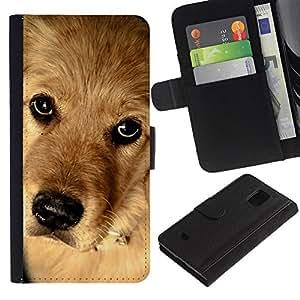 Billetera de Cuero Caso Titular de la tarjeta Carcasa Funda para Samsung Galaxy S5 Mini, SM-G800, NOT S5 REGULAR! / Golden Retriever Canadian Mongrel Dog / STRONG