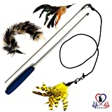 Pet Fit For Life 2 Feathers and 1 Soft Teaser/Exerciser Interactive Cat Wand for Your Cat or Kitten