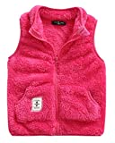 Toddler Girls Fleece Vest Zip Up Spring Waistcoat Casual Zipper Up Sleeveless Windcoat 3-4T Rose