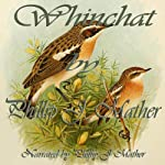 Whinchat | Phillip J. Mather