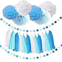 Baby Blue White Turquoise Blue Tissue Paper Pom Poms Snow Theme Party Decor Baby Boy Baby Shower/Birthday Party Paper Decorations First Birthday Boy Decorations Tassel Garland Paper Circle Garland