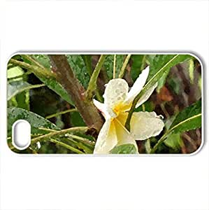 Chameli - Case Cover for iPhone 4 and 4s (Flowers Series, Watercolor style, White)