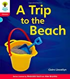 Oxford Reading Tree: Level 4: Floppy's Phonics Non-Fiction: A Trip to the Beach