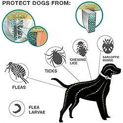 Perro Gato Collar Anti Pulgas Garrapatas Mosquitos Repelente Al Aire Libre Protector Ajustable Impermeable Collar Suministros para Mascotas